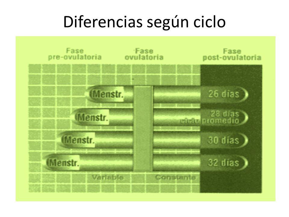 Diferencias según ciclo