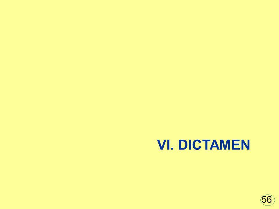 VI. DICTAMEN 56
