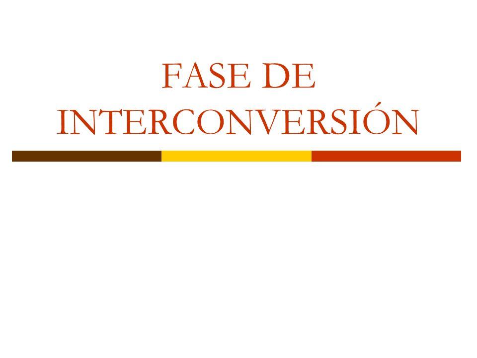 FASE DE INTERCONVERSIÓN
