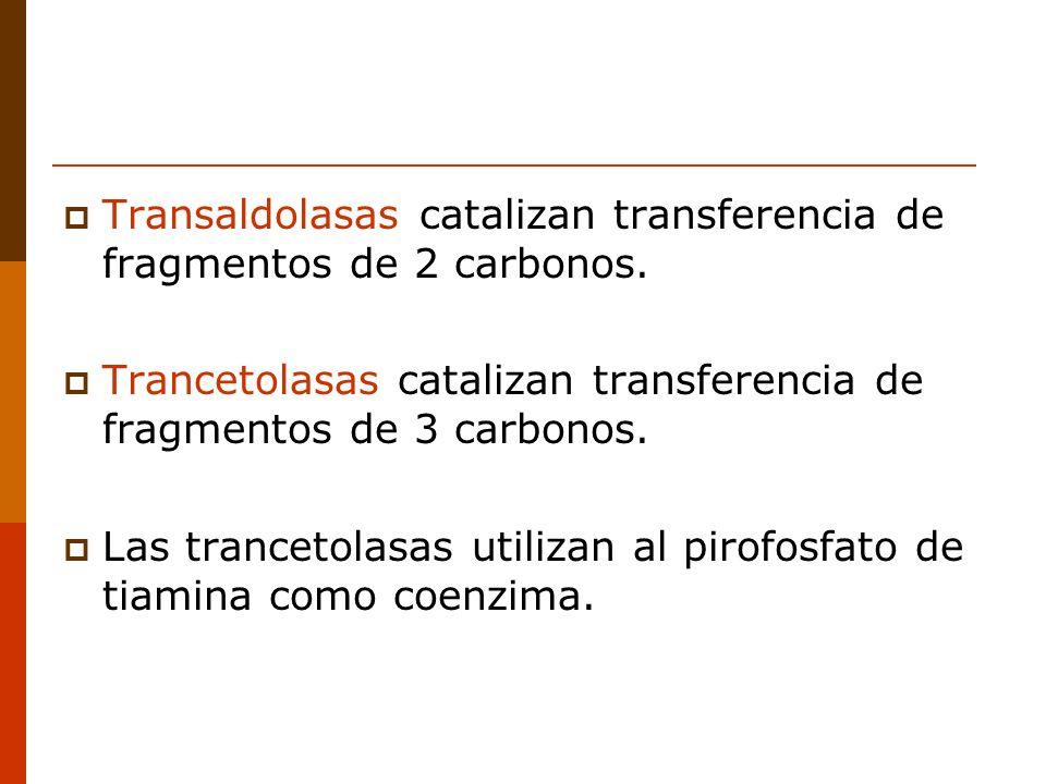 Transaldolasas catalizan transferencia de fragmentos de 2 carbonos.