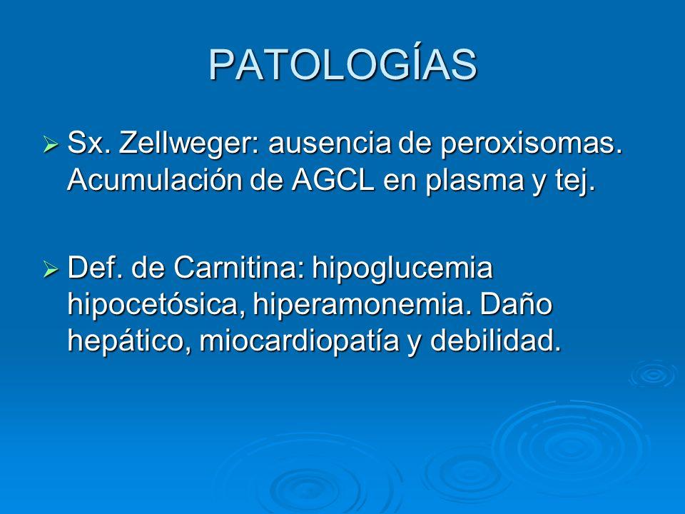 PATOLOGÍAS Sx. Zellweger: ausencia de peroxisomas. Acumulación de AGCL en plasma y tej.