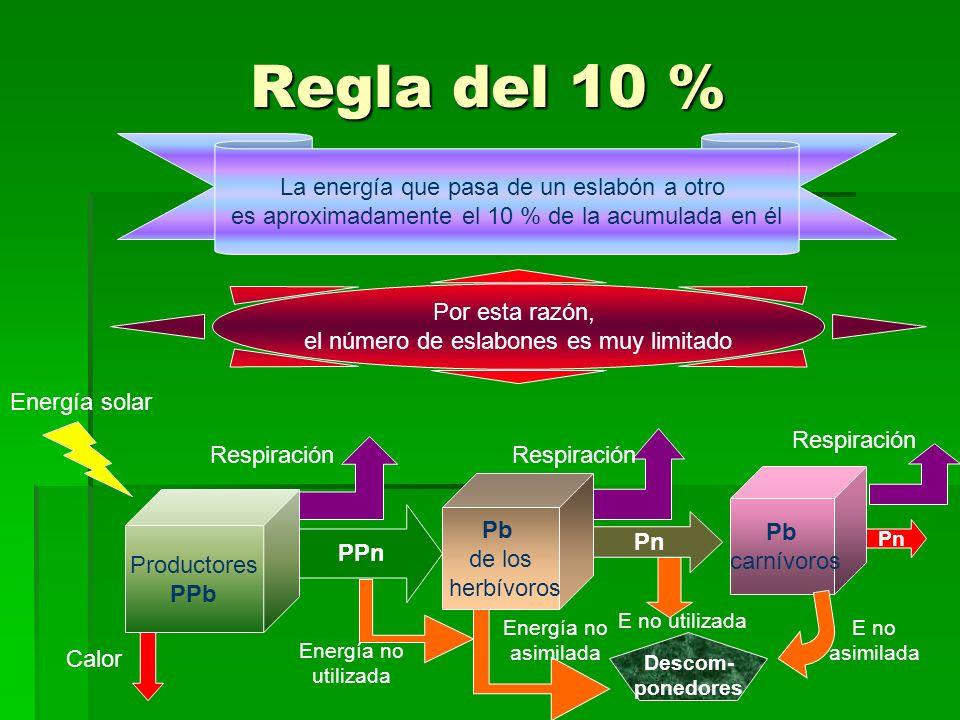 Regla del 10 % La energía que pasa de un eslabón a otro