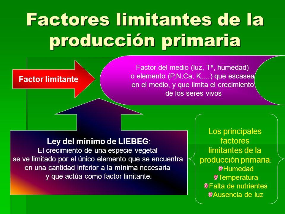 Factores limitantes de la producción primaria