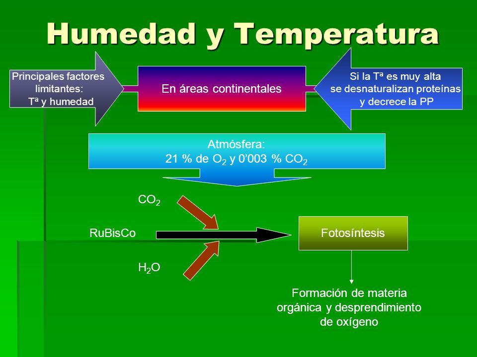 Humedad y Temperatura En áreas continentales Atmósfera: