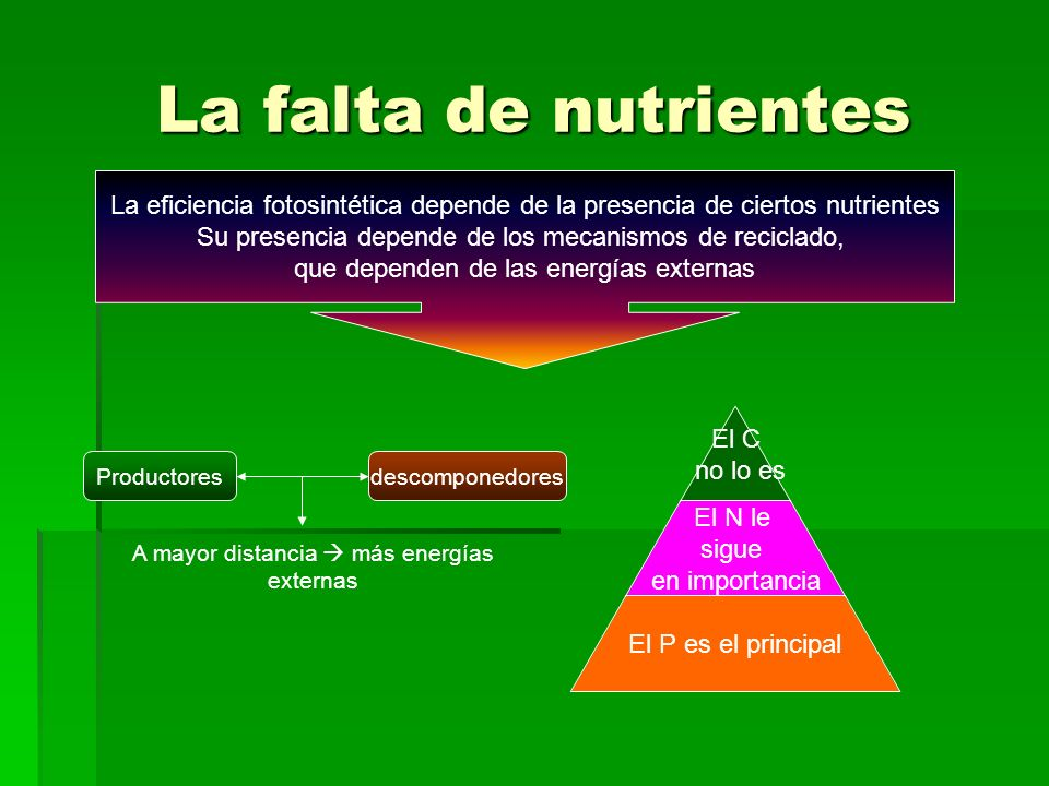 La falta de nutrientes La eficiencia fotosintética depende de la presencia de ciertos nutrientes.