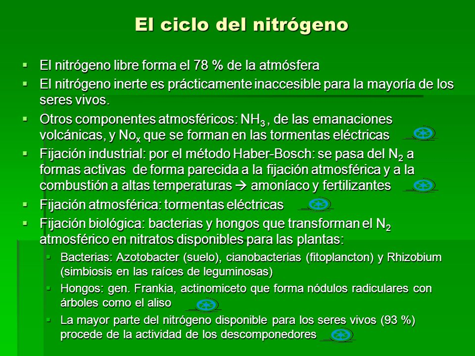fijacion biologica del nitrogeno en leguminosas pdf