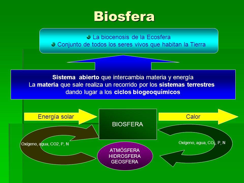 Biosfera La biocenosis de la Ecosfera