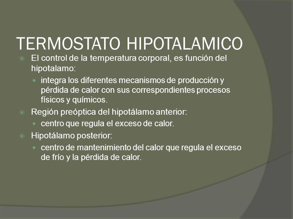 TERMOSTATO HIPOTALAMICO