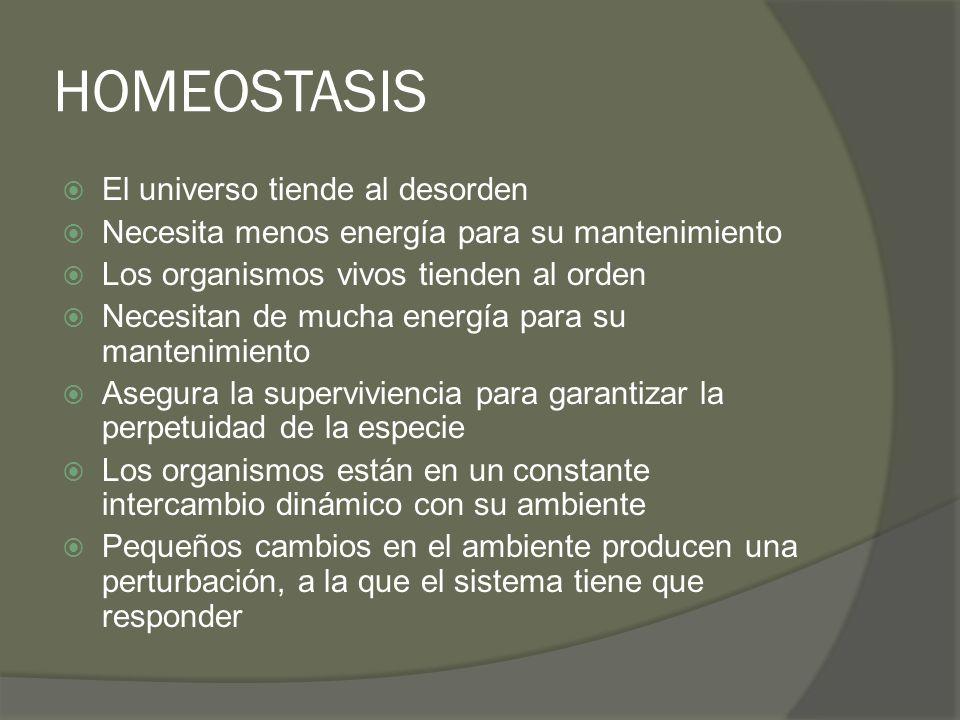 HOMEOSTASIS El universo tiende al desorden