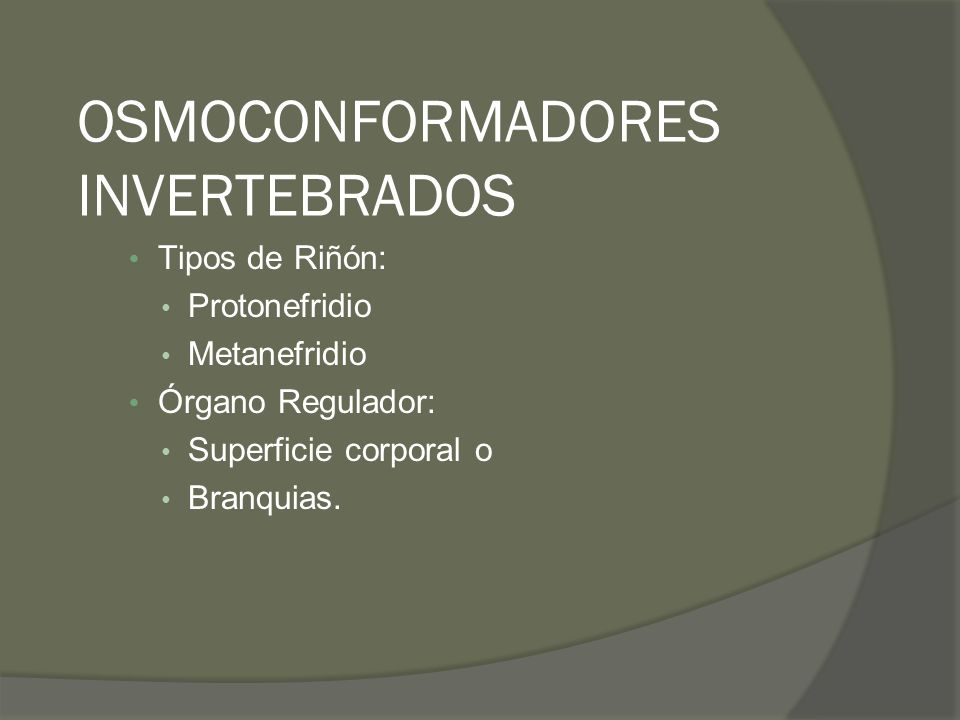 OSMOCONFORMADORES INVERTEBRADOS