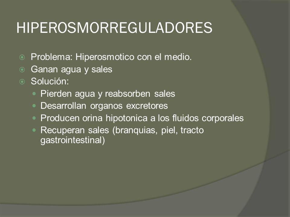 HIPEROSMORREGULADORES