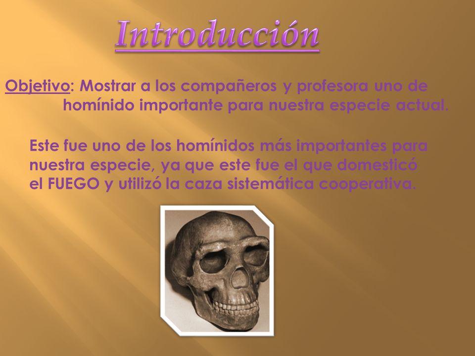 Introducción Objetivo: Mostrar a los compañeros y profesora uno de homínido importante para nuestra especie actual.