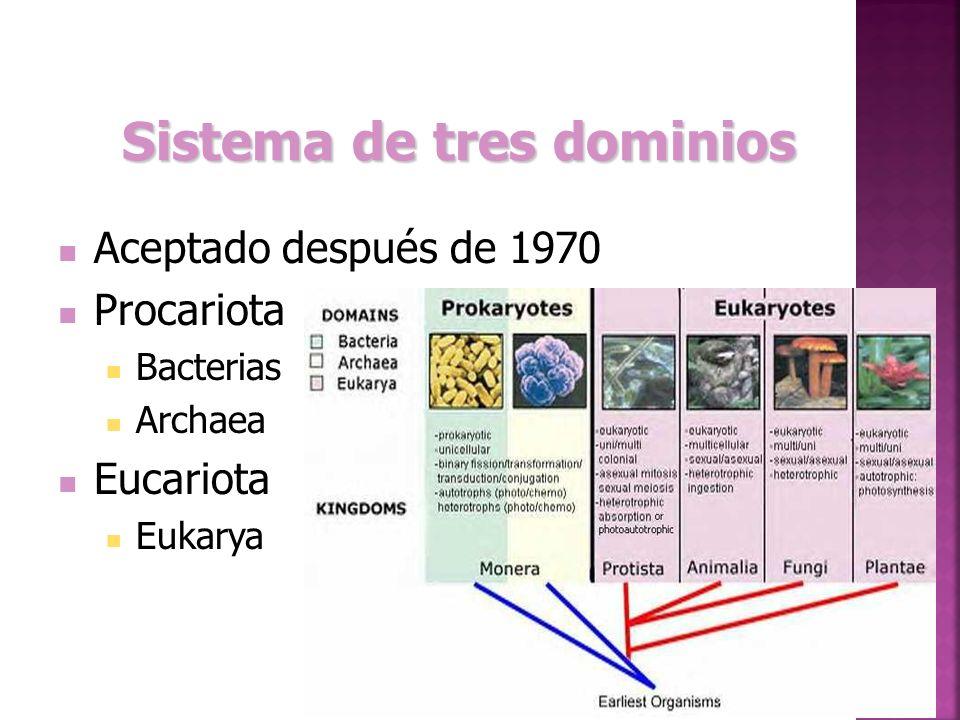 Sistema de tres dominios