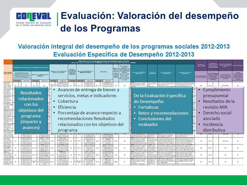 Evaluación: Valoración del desempeño de los Programas