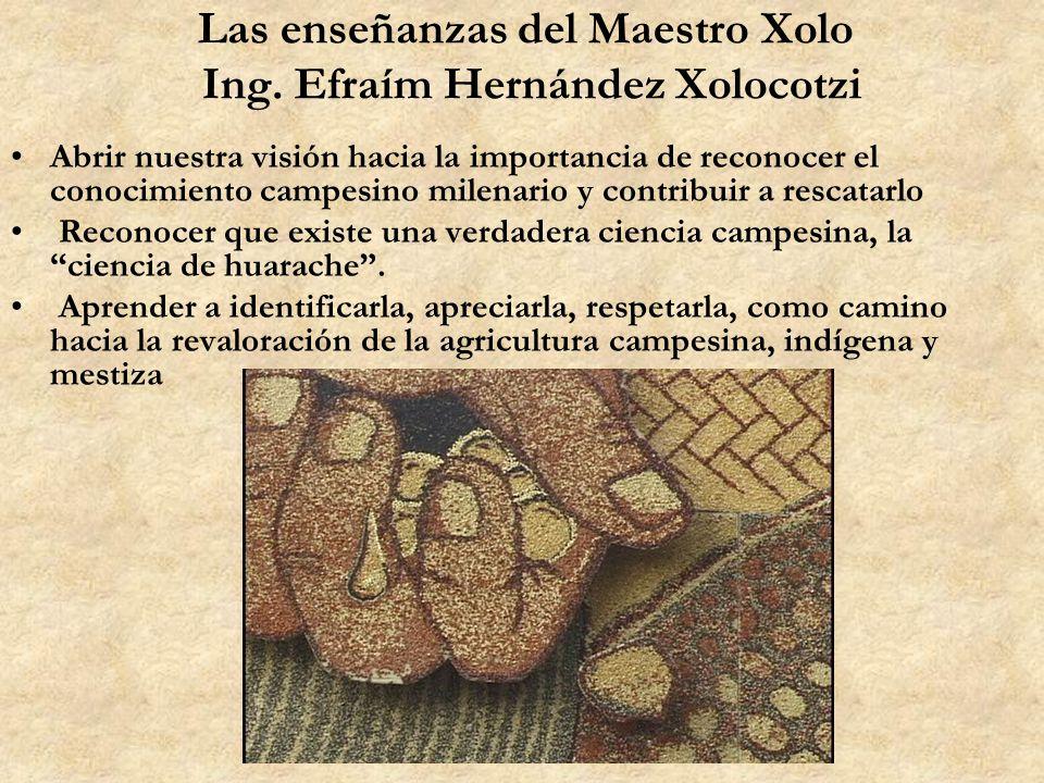 Las enseñanzas del Maestro Xolo Ing. Efraím Hernández Xolocotzi