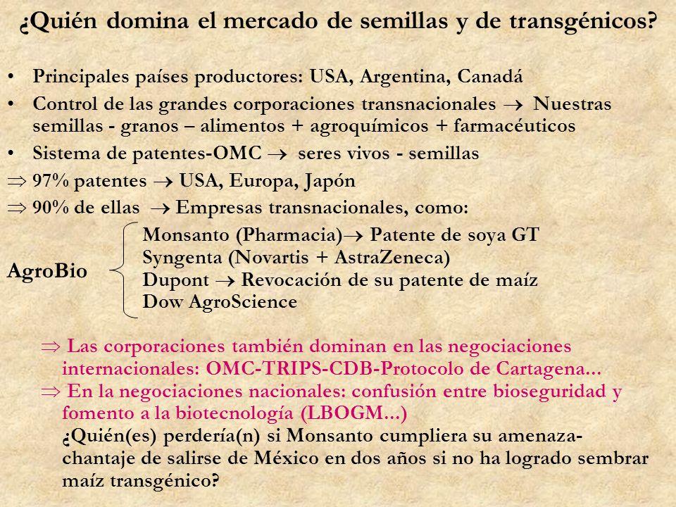 ¿Quién domina el mercado de semillas y de transgénicos