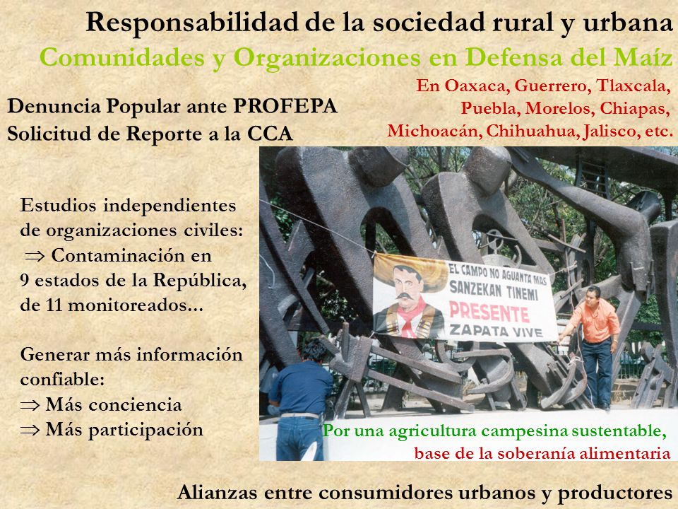 Responsabilidad de la sociedad rural y urbana