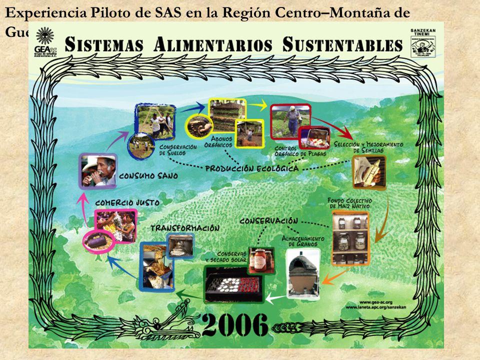 Experiencia Piloto de SAS en la Región Centro–Montaña de Guerrero