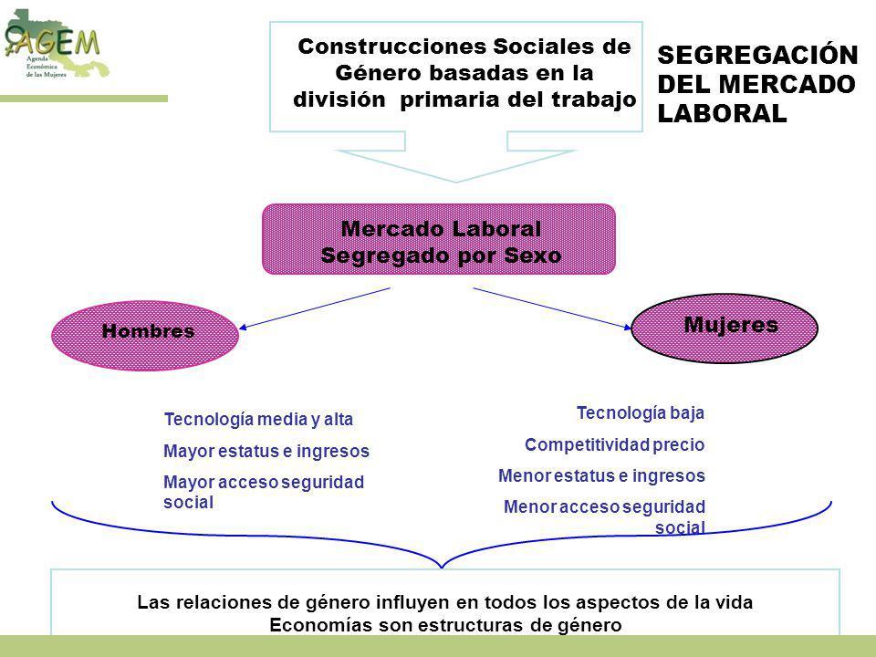 SEGREGACIÓN DEL MERCADO LABORAL