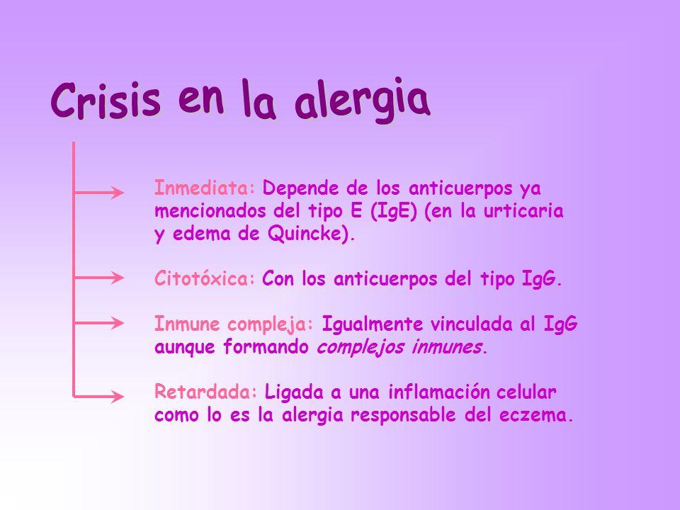 Crisis en la alergia Inmediata: Depende de los anticuerpos ya mencionados del tipo E (IgE) (en la urticaria y edema de Quincke).