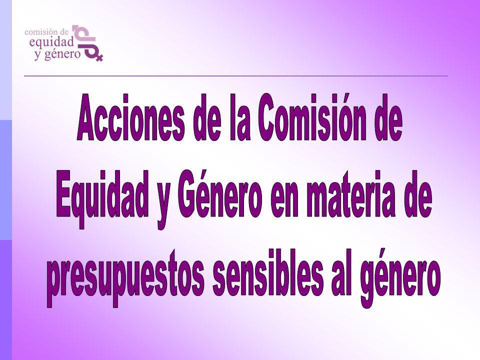 Acciones de la Comisión de Equidad y Género en materia de
