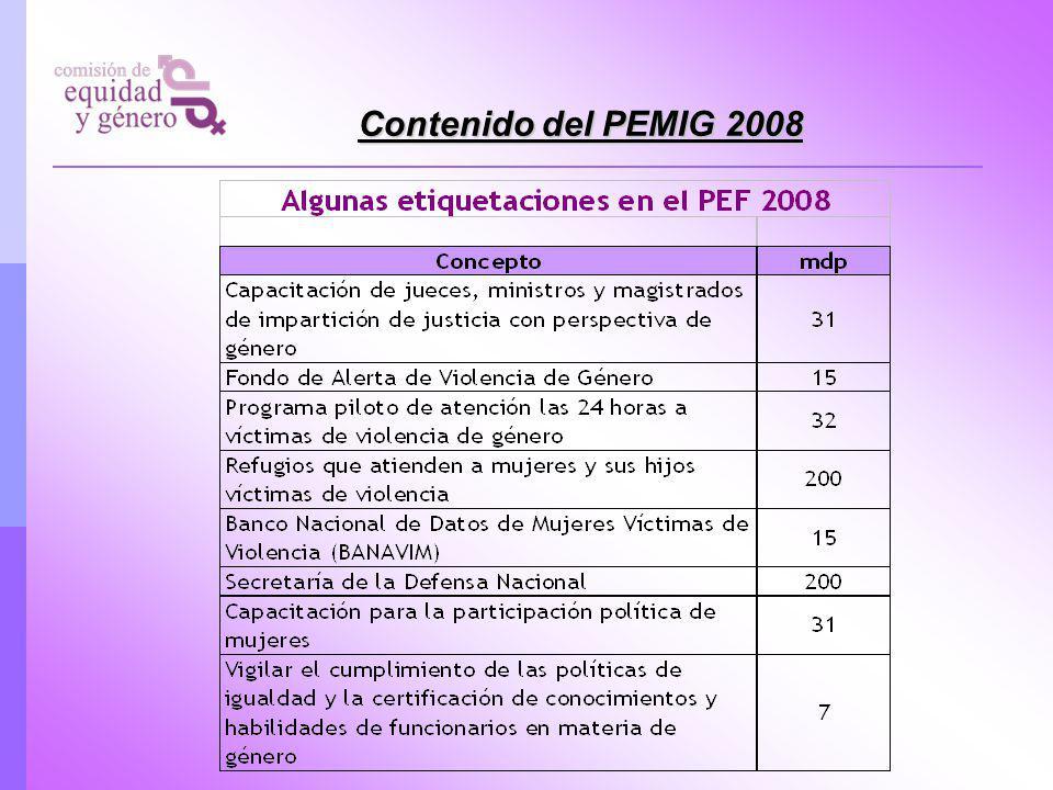 Contenido del PEMIG 2008
