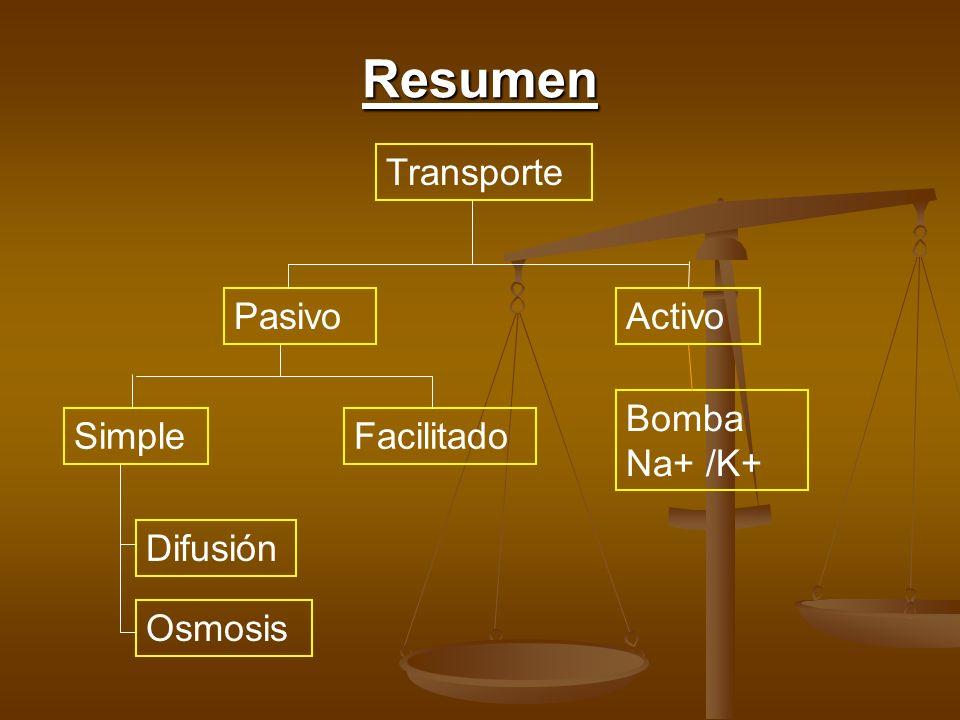 Resumen Transporte Pasivo Activo Bomba Na+ /K+ Simple Facilitado