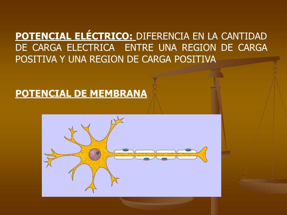 POTENCIAL ELÉCTRICO: DIFERENCIA EN LA CANTIDAD DE CARGA ELECTRICA ENTRE UNA REGION DE CARGA POSITIVA Y UNA REGION DE CARGA POSITIVA