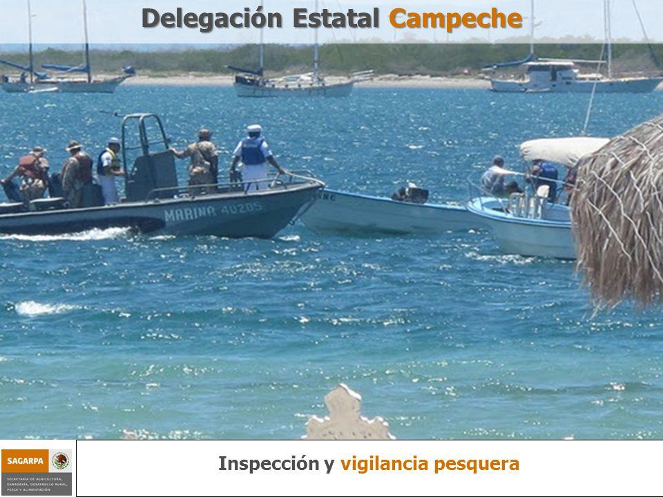 Delegación Estatal Campeche Inspección y vigilancia pesquera