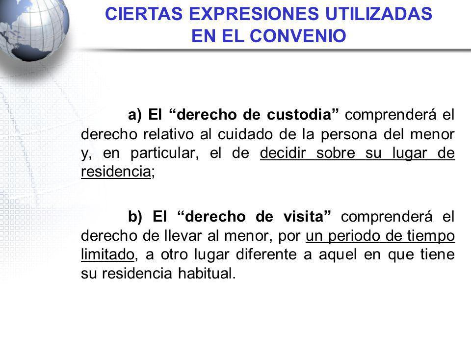 CIERTAS EXPRESIONES UTILIZADAS EN EL CONVENIO