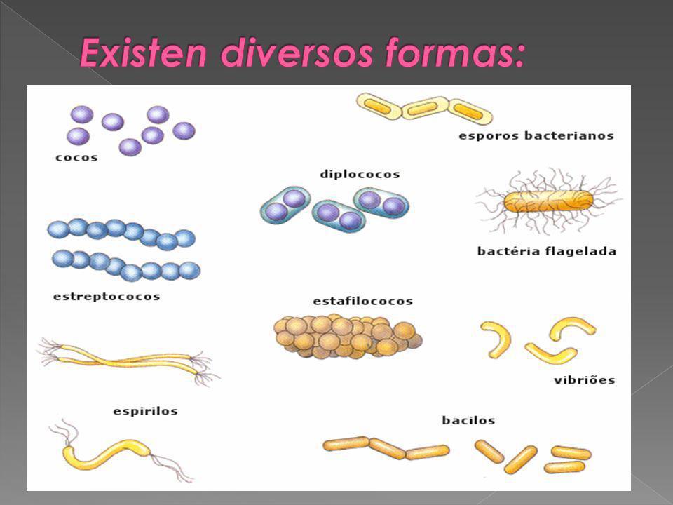 Existen diversos formas: