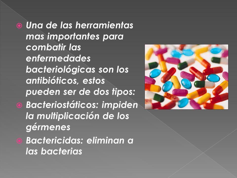 Una de las herramientas mas importantes para combatir las enfermedades bacteriológicas son los antibióticos, estos pueden ser de dos tipos: