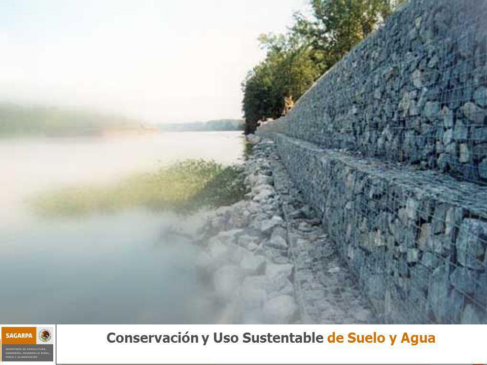Conservación y Uso Sustentable de Suelo y Agua