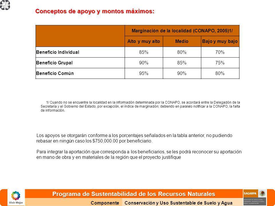 Marginación de la localidad (CONAPO, 2005)1/