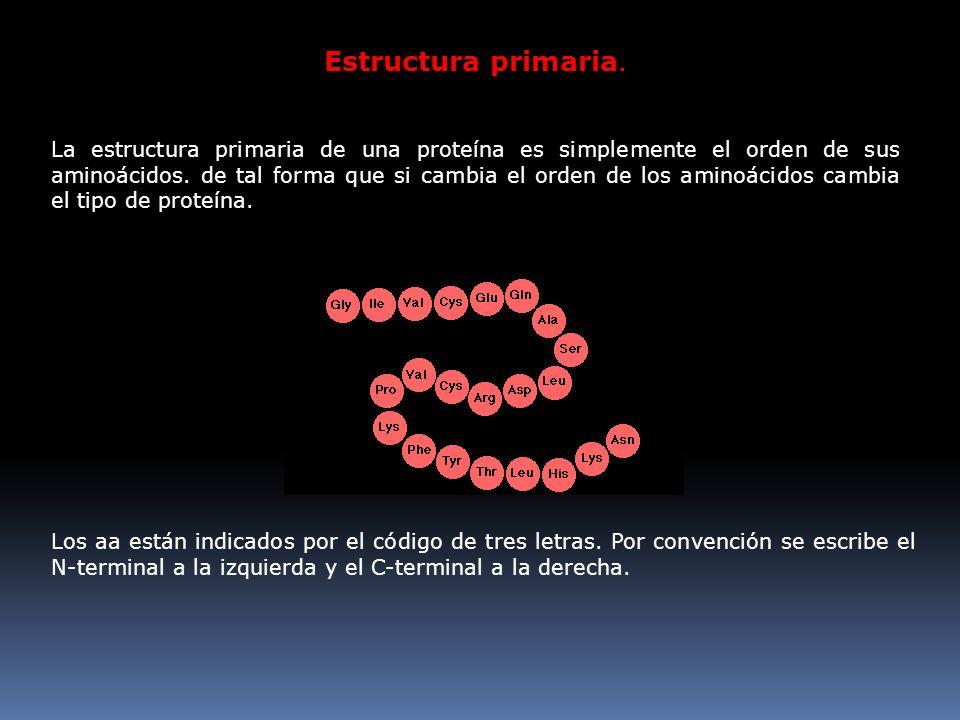 Estructura primaria. N C