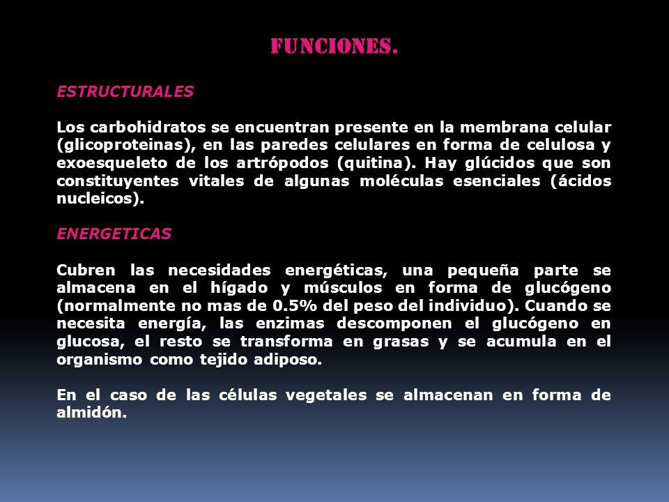 Funciones. ESTRUCTURALES