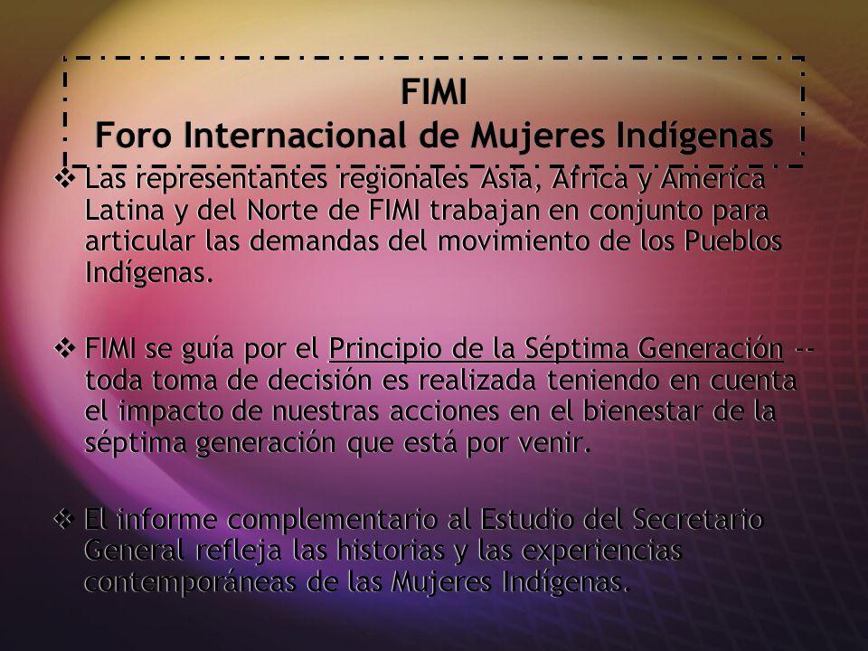 FIMI Foro Internacional de Mujeres Indígenas