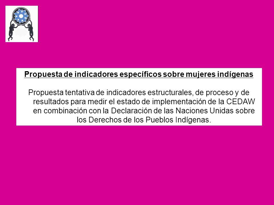 Propuesta de indicadores específicos sobre mujeres indígenas