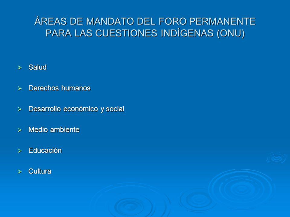 ÁREAS DE MANDATO DEL FORO PERMANENTE PARA LAS CUESTIONES INDÍGENAS (ONU)