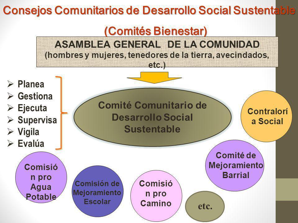 Consejos Comunitarios de Desarrollo Social Sustentable