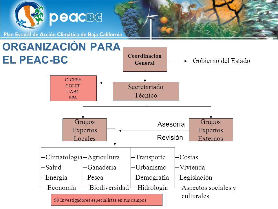 ORGANIZACIÓN PARA EL PEAC-BC