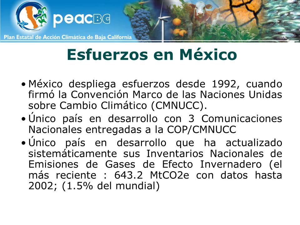 Esfuerzos en MéxicoMéxico despliega esfuerzos desde 1992, cuando firmó la Convención Marco de las Naciones Unidas sobre Cambio Climático (CMNUCC).