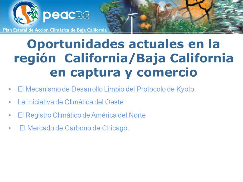 Oportunidades actuales en la región California/Baja California en captura y comercio