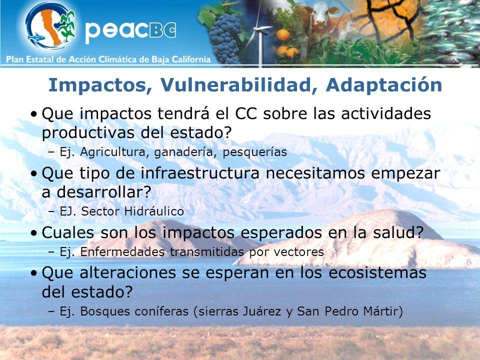 Impactos, Vulnerabilidad, Adaptación