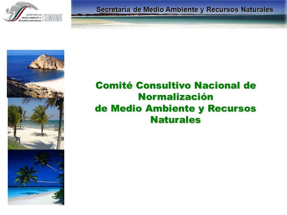 Comité Consultivo Nacional de Normalización