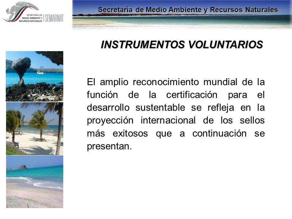 INSTRUMENTOS VOLUNTARIOS