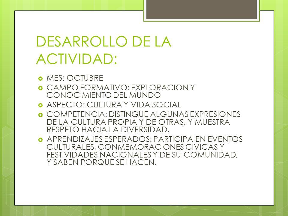DESARROLLO DE LA ACTIVIDAD: