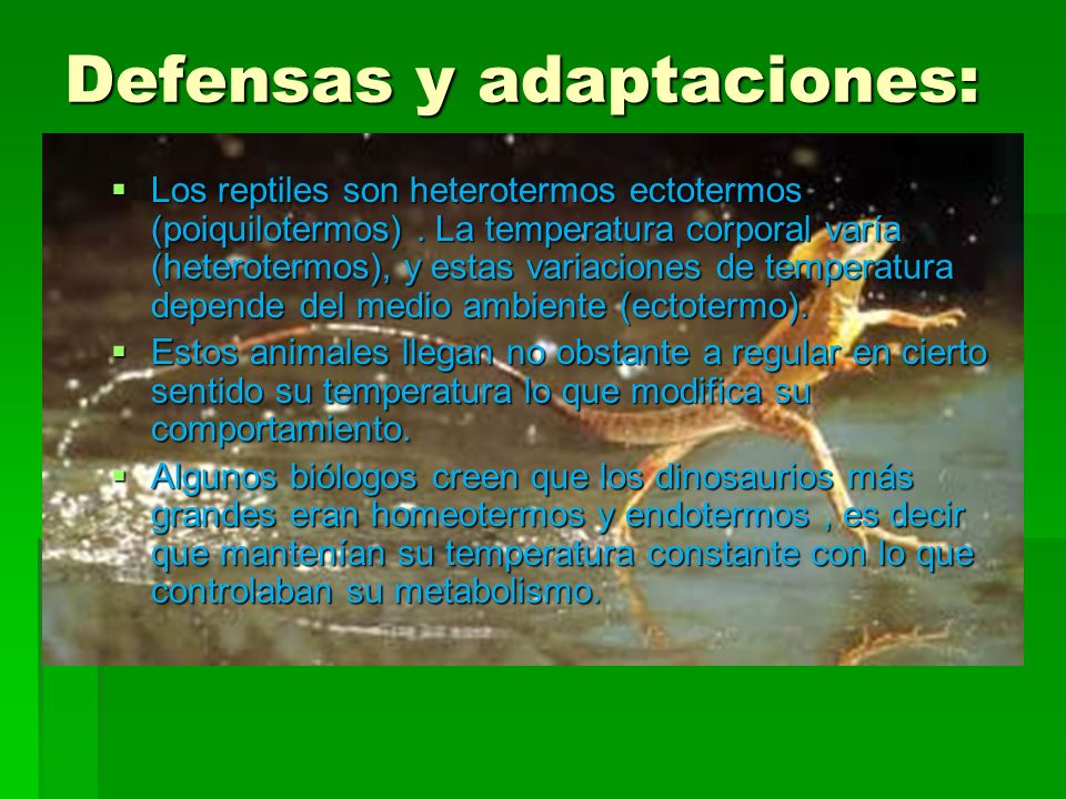 Defensas y adaptaciones: