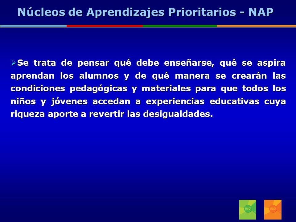 Núcleos de Aprendizajes Prioritarios - NAP
