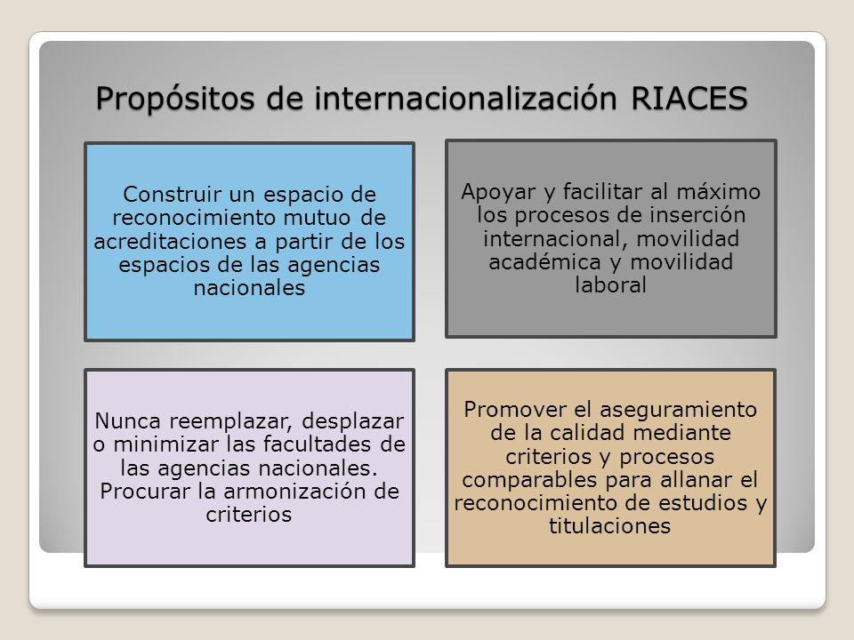 Propósitos de internacionalización RIACES
